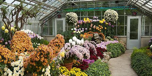 Horticultural Mixes